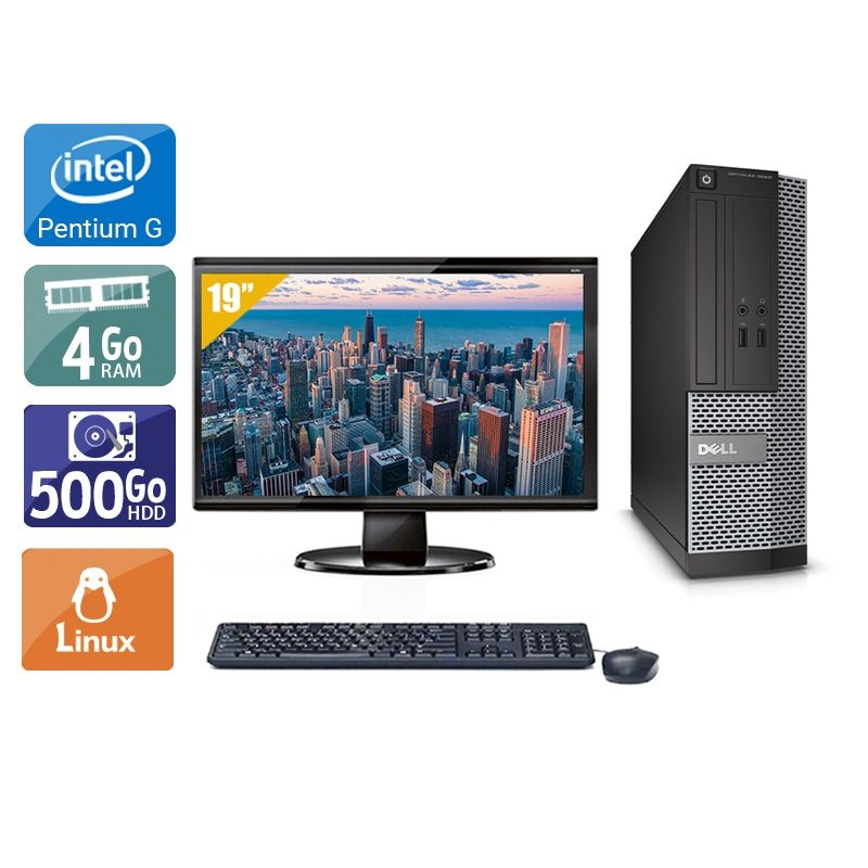 Dell Optiplex 3010 SFF Pentium G Dual Core avec Écran 19 pouces 4Go RAM 500Go HDD Linux
